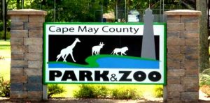 cape-may-zoo
